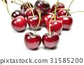 American Cherry 31585200