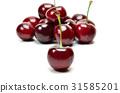 American Cherry 31585201
