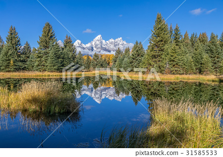 Scenic Teton Fall Reflection 31585533