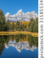 Scenic Teton Fall Reflection 31585534
