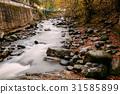 Borjomi, Samtskhe-Javakheti, Georgia. Scenic View 31585899