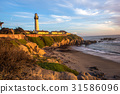 Pigeon Point Lighthouse 31586096