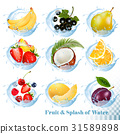 icon, fruit, water 31589898