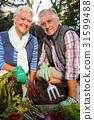 Organic, Gardener, Couple 31599488