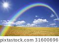 彩虹 小麥地 雲彩 31600696