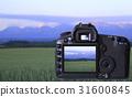 디지털 카메라 31600845