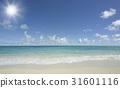 海灘和波浪和雲彩 31601116