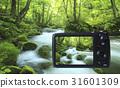 Digital camera 31601309