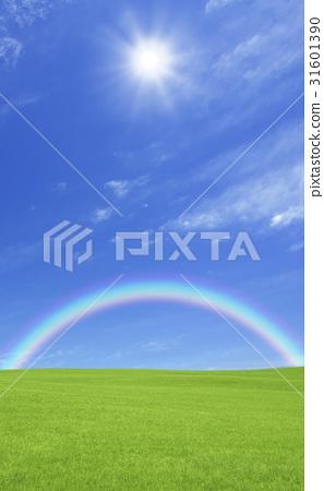 草原,彩虹和太陽 31601390