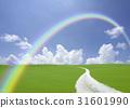 rainbow, hill, spring 31601990