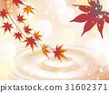 단풍 나무, 단풍, 단풍나무 31602371