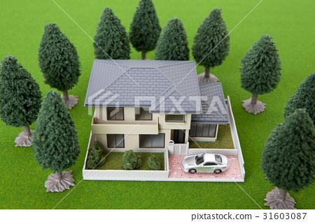 A house 31603087