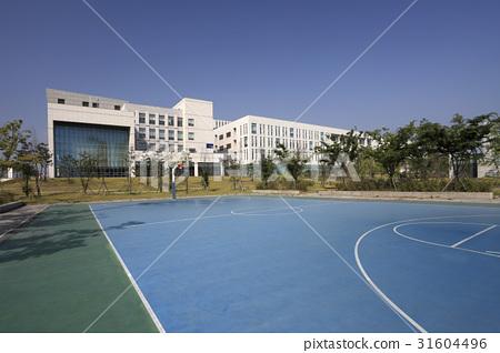 농구장,연세대학교국제캠퍼스,송도,연수구,인천 31604496