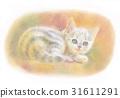 小貓的陽光 31611291