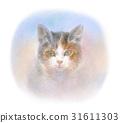凝視著凝視的貓 31611303