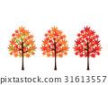 가을, 잎, 단풍 31613557