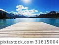 Garibaldi lake 31615004