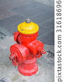 Brightly Colored Fire Hydrant 31618696