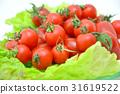 Mini tomato 2 31619522