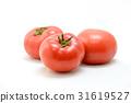 토마토 31619527