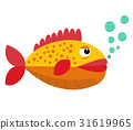 fish, tropical, vector 31619965