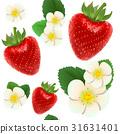 red, ripe, white 31631401
