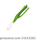 Green onion isolated illustration 31633262