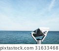 Baltic sea on summer 31633468