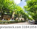 omotesando, street, avenue 31641056