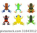 矢量 矢量图 青蛙 31643012