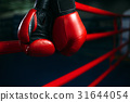 Gloves on the ring ropes, boxing concept, nobody 31644054
