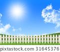 fence, grass, field 31645376