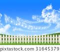 fence, grass, field 31645379