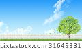 fence, wood, sky 31645381