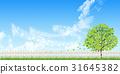 fence, wood, sky 31645382