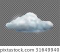 Single weather icon 31649940