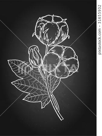Graphic cotton plants 31655932