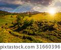 sunset, Carpathian, landscape 31660396