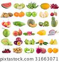 Fruits isolated on white background. 31663071
