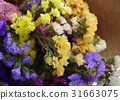 Bouquet of Dry Flowers isolated on a background. 31663075