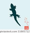 Lizard icon isolated 31665722