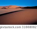 나미브,나미비아 31668082