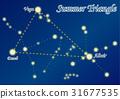 여름의 대 삼각형 31677535