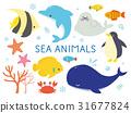 海生物例證 31677824
