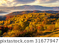 foggy, mountain, hill 31677947
