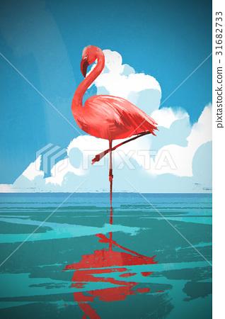 Flamigo standing on the sea 31682733