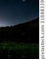 firefly, lightning, bug 31688339