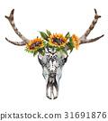 公牛 花朵 花 31691876
