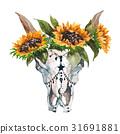 公牛 花朵 花 31691881