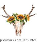 公牛 花朵 花 31691921